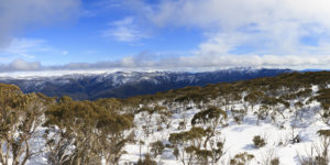 Looking towards the Bogong High Plains from Mt Wills, Victoria, Australia in winter 2011