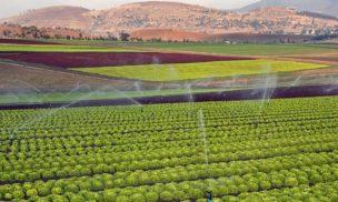 img-tasmania-farm